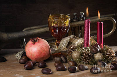 Nutrient Photograph - Christmas Fall Still-life by Carlos Caetano
