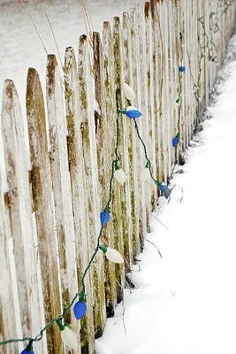 Photograph - Christmas Fence by Troy Stapek