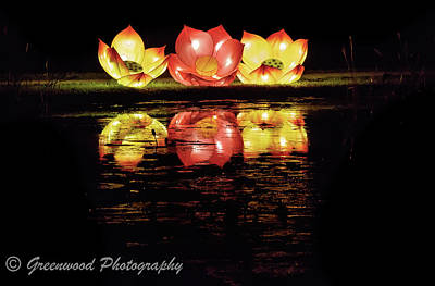 Photograph - Christmas Flowers by Les Greenwood