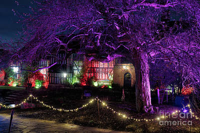 Photograph - Christmas Glow Rhs Wisley by Tim Gainey