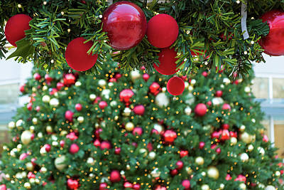 Photograph - Christmas Holiday Red Ornaments On Garland by David Gn