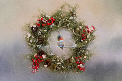 Photograph - Christmas Hummer by Lynn Bauer