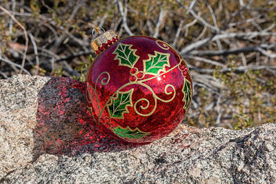 Photograph - Christmas In The Desert by Teresa Wilson