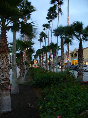Photograph - Christmas In Venice Florida by Tawes Dewyngaert