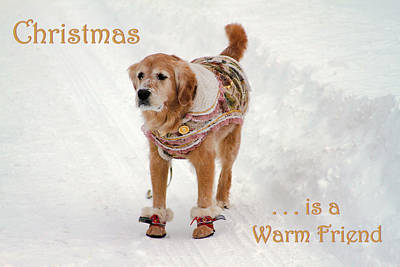 Photograph - Christmas Is A Warm Friend by Bonnie Follett