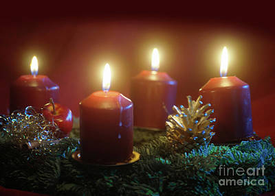 Photograph - Christmas Is Coming 1 by Rudi Prott