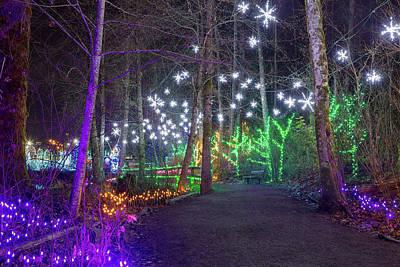 Photograph - Christmas Lights Decoration Along Lafarge Lake Path by David Gn