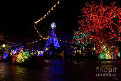 Photograph - Christmas Lights Galore by Jennifer White