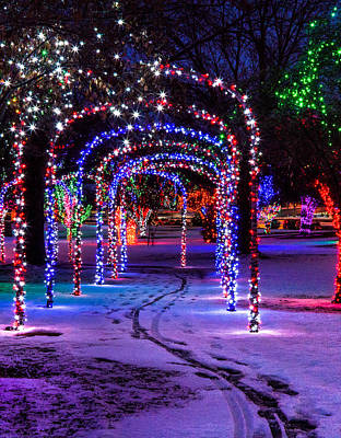Christmas Lights In The Park Art Print by Brad Stinson