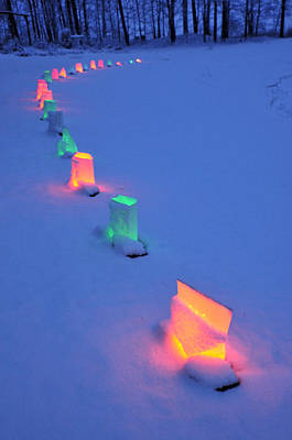 Photograph - Christmas Lights In The Snow by David Arment