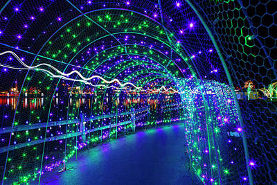 Photograph - Christmas Lights In Tunnel At Lafarge Lake by David Gn