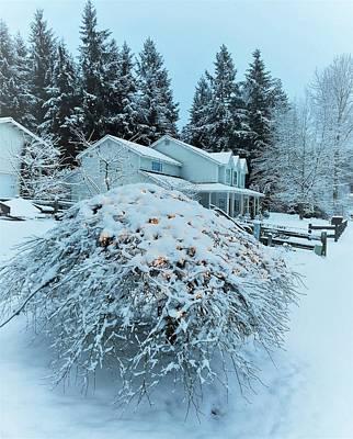Pyrography -  Christmas Morning by Sergey and Svetlana Nassyrov