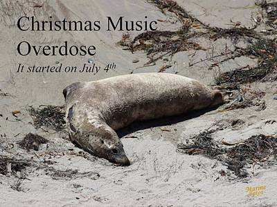 Photograph - Christmas Music Overdose by Gary Canant