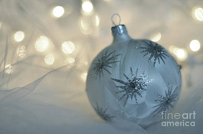 Photograph - Christmas Ornament by Birgit Tyrrell