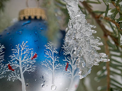Photograph - Christmas Ornament With Ice by Jim DeLillo