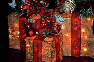 Photograph - Christmas Packages 1 by Lesa Fine