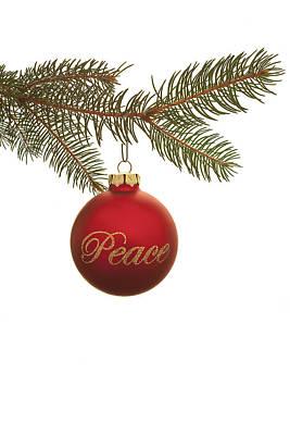 Photograph - Christmas Peace by Andrew Soundarajan