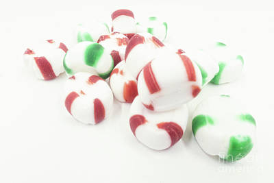Photograph - Christmas Peppermint Candy by Jim And Emily Bush