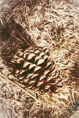 Digital Art - Christmas Pinecone On Barn Floor by Jorgo Photography - Wall Art Gallery
