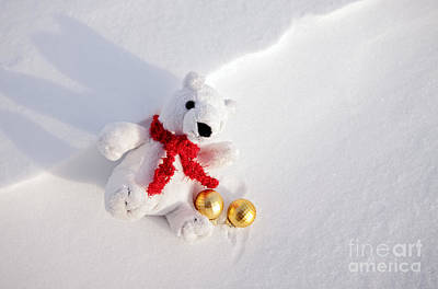 Photograph - Christmas Polar Bear In Snow by Charline Xia