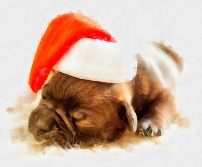 Saint Nicholas Painting - Christmas Puppy by Esoterica Art Agency