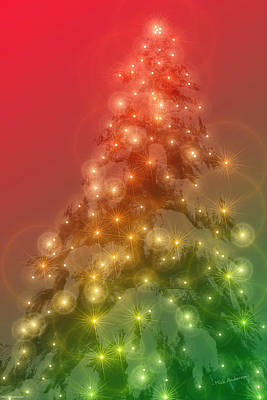 Photograph - Christmas Radiance by Mick Anderson