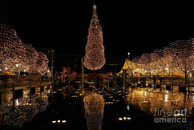 Photograph - Christmas Reflections by Dennis Hedberg