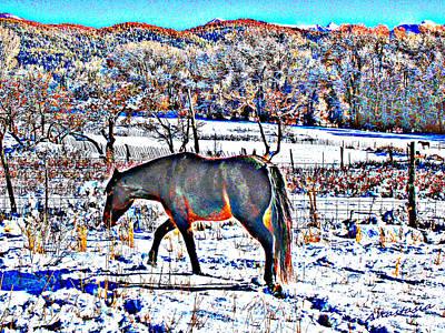 Christmas Roan El Valle II Art Print by Anastasia Savage Ealy