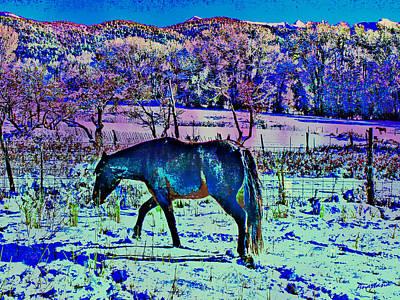 Christmas Roan El Valle Iv Art Print by Anastasia Savage Ealy