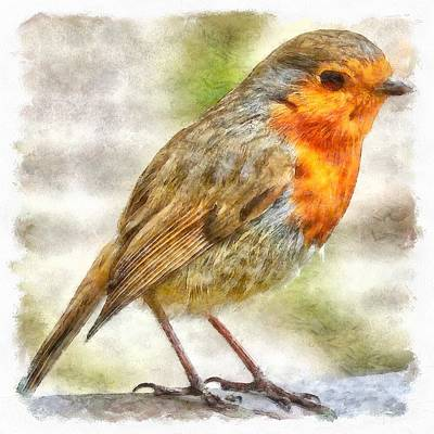 Painting - Christmas Robin Winter Watercolor by Taiche Acrylic Art