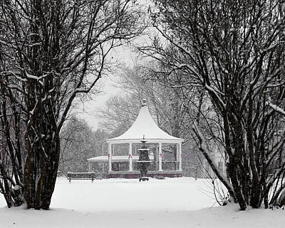 Photograph - Christmas Season In The Park by Tim Kirchoff