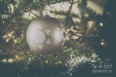 Photograph - Christmas Silver by Patricia Hofmeester