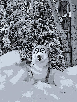 Dog Christmas Card Digital Art - Christmas Snow Dog - Grayscale by Marian Bell