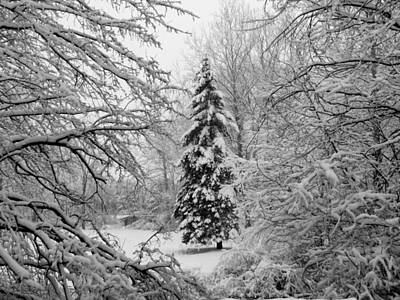 Indiana Landscapes Photograph - Christmas Snow by Michael L Kimble