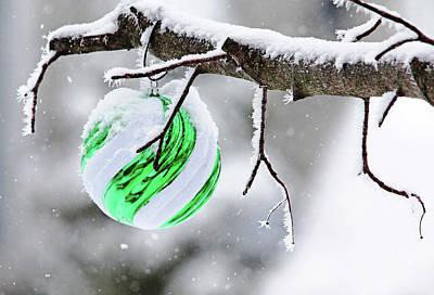 Photograph - Christmas Sparkle by Debbie Oppermann