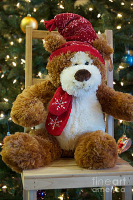 Photograph - Christmas Teddy Bear by Vinnie Oakes