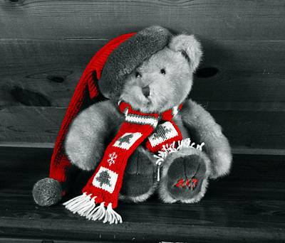 Photograph - Christmas Teddy by Joseph Frank Baraba