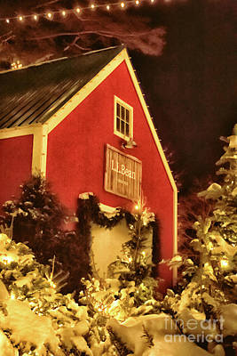 Photograph - Christmas Time At Ll Bean by Elizabeth Dow
