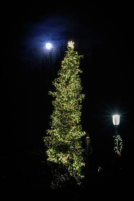 Photograph - Christmas Tree And Moon by Michael McAuliffe