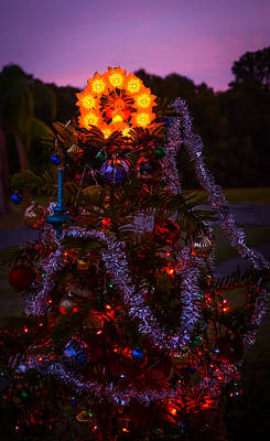 Decorated For Christmas Photograph - Christmas Tree At Sunset by Zina Stromberg