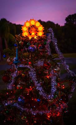 Christmas Tree At Sunset Art Print by Zina Stromberg