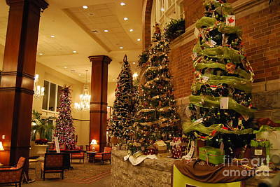 Art Print featuring the photograph Christmas Tree by Eric Liller