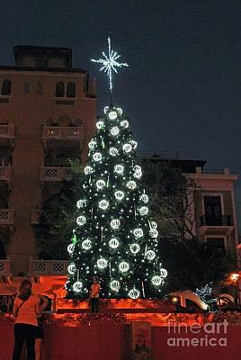 Photograph - Christmas Tree by Gary Wonning