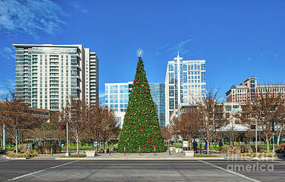 Christmas Tree In Dallas Park Print by Tod and Cynthia Grubbs