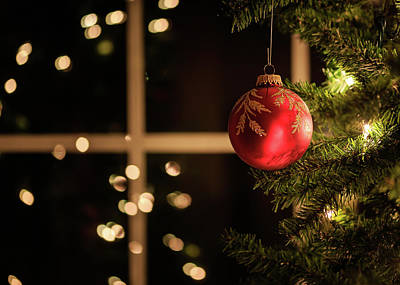 Photograph - Christmas Tree Inside And Out by Joni Eskridge
