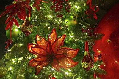 Photograph - Christmas Tree Ornaments by Denise Mazzocco