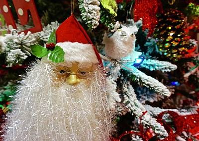 Photograph - Christmas Tree Santa by Norma Brock