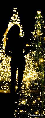 Photograph - Christmas Tree Walk 2466 by Dan Beauvais