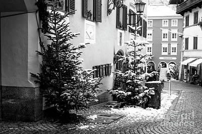 Photograph - Christmas Trees In Berchtesgaden by John Rizzuto