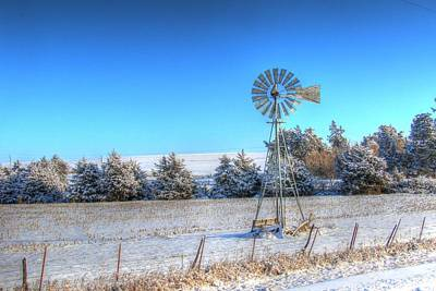 Photograph - Christmas Trees In Iowa by J Laughlin